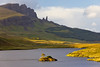 SCOTLAND-ISLE OF SKYE-THE STORR-OLD MAN OF STORR-LOCH LEATHAN