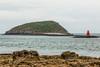UK-WALES-PENMON-PUFFIN ISLAND