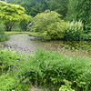 Pond in Clan Donald Skye garden