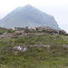 Mt. Sligachan, Cuillin mountains - Isle of Skye