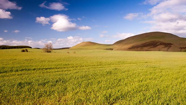 Minto Hills