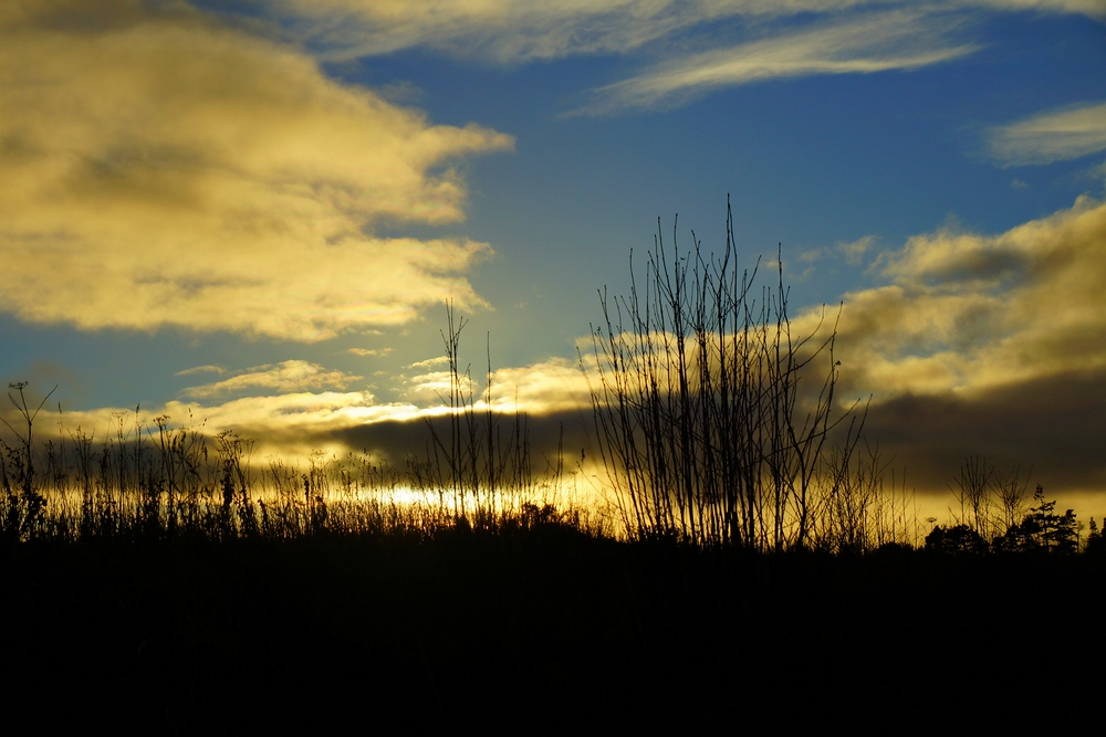 One last shot from Culloden before sunset