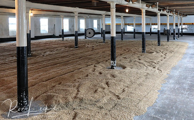 Benriach: Malting floor where germinated barley is dried for 4-6 days to stop germination