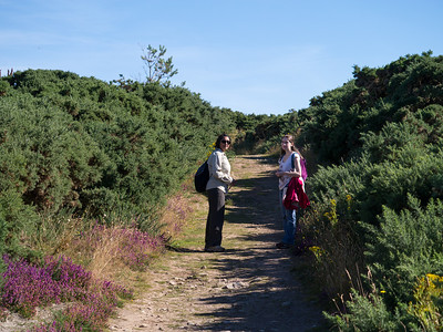Walking along the coastal path
