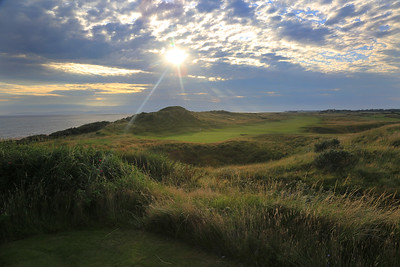 RoyalTroon_06BackSunset_0090