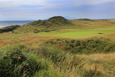 RoyalTroon_06Back_0003