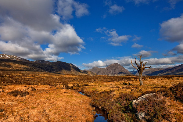 Rannoch Moor - Photo PB2875