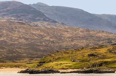 Scotland - Isle of Rum - Red Deer