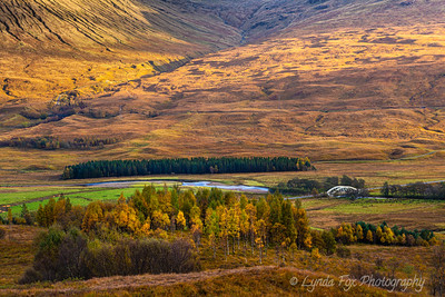Glencoe Valley Fall Colors