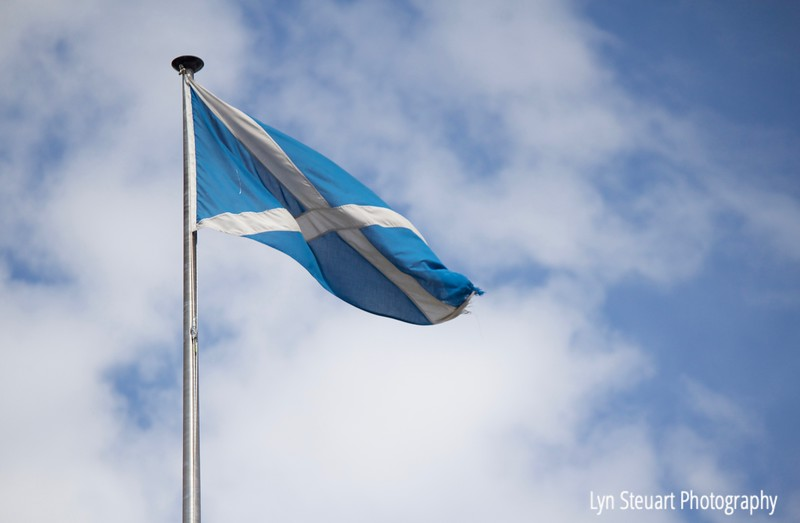 Scottish flag - the Saltire