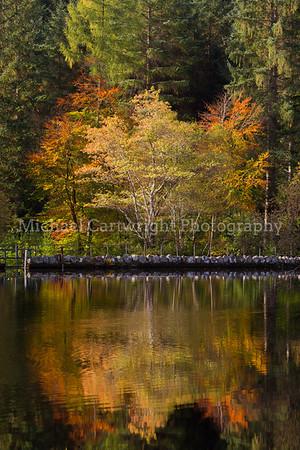 Autumn on Glencoe Lochan