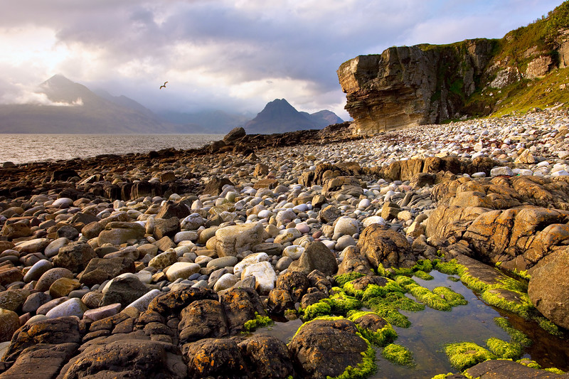 Elgol, The Seagull PB2652