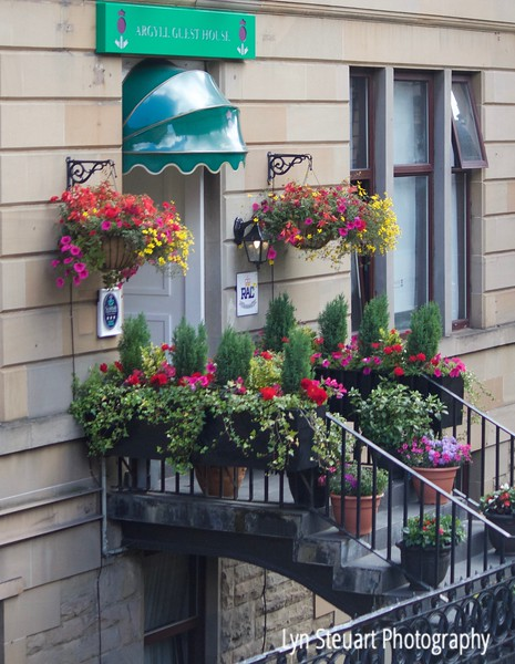 Glasgow - Argyll Guest House adorned with a blooming welcome!  So many shops and homes had an abundance of flowering plants.