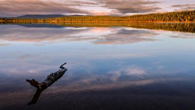 Loch Morlich, Cairngorms N.P. - Scotland