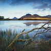 At the Lochan's Edge