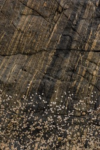 Gruinard beach, Wester Ross