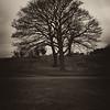 Calton Hill – Silhouette