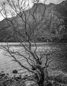 Loch Maree, Wester Ross