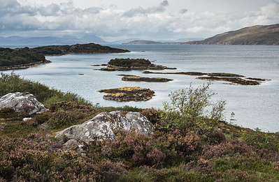 Scotland 8