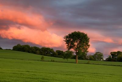 Heaven's On Fire, Drumossie, Scotland