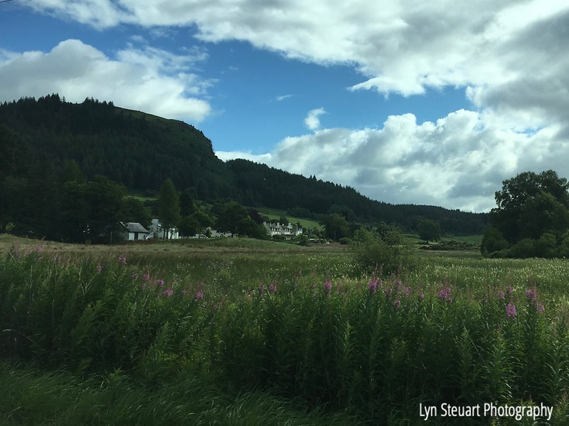 Countryside in the Trossachs