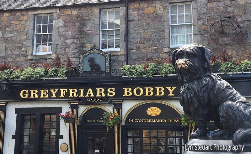 Greyfriars Bobby - a story I remember well from my childhood. The heart-warming story of Greyfriars Bobby tells of a small Skye terrier who couldn't bear to leave his master's body and remained by his grave in Edinburgh from 1858 to 1872.