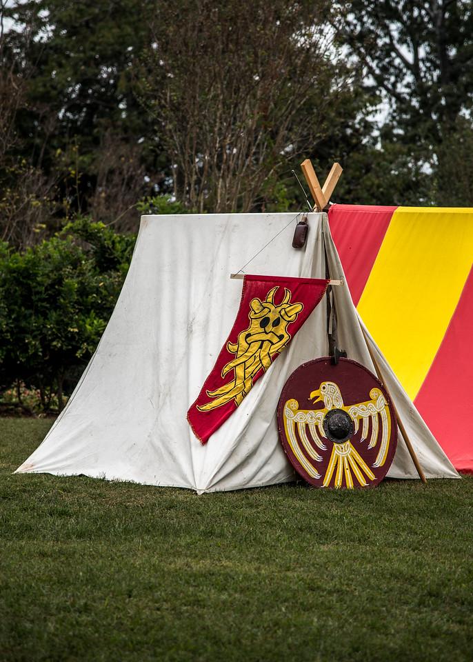 Viking Encampment at Barrington Hall