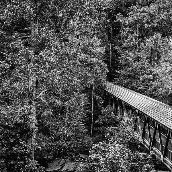 Covered Bridge over Vickery Creek-Roswell Mill