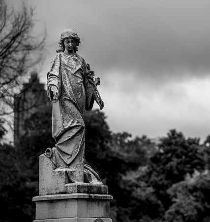Scott Kelby Worldwide Photo Walk 2015 - Covington, Oakland Cemetery