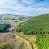 160508 Ettrick Forest Valley A006
