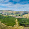 160508 Ettrick Forest Valley A005