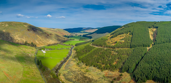 160508 Ettrick Forest Valley A002