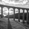 150730 P Leaderfoot Viaduct 004in bw
