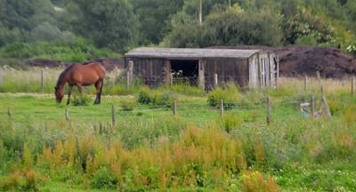 12t Non Vent Van at Lochtyside Farm east of B9130, Thornton  17/07/15.