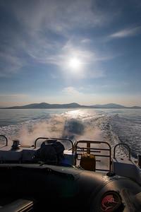 St Kilda Bound