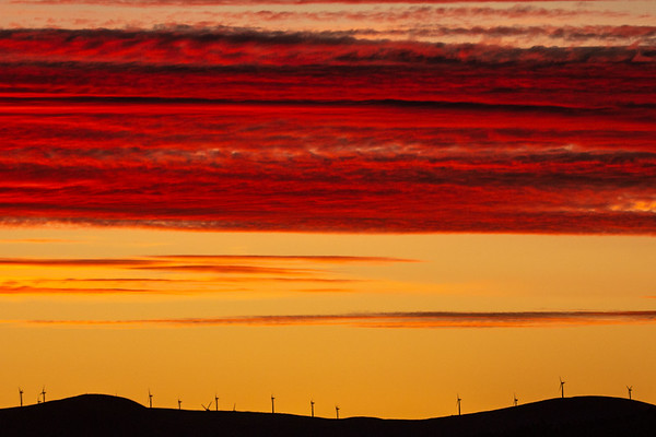 Sunset over Evanton Windfarm