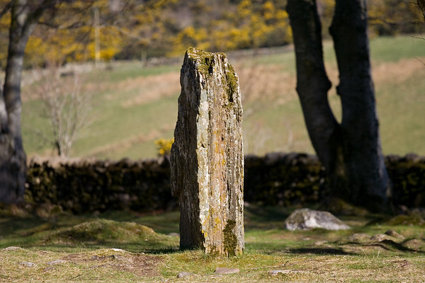 Clava Cairns Standing Stone