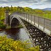scottish highlands bridge at craigellachie
