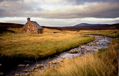 . . . this one in fact, on a lonely Angus moor . . .  10/94
