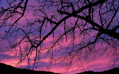 Winter dawn, Gleann Dubh Lighe.  8.30am, 4/1/86