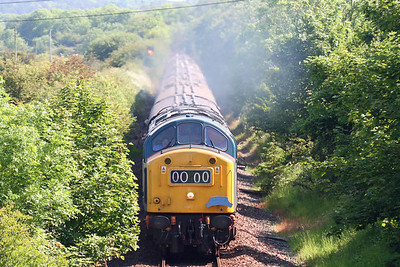 40145 1Z11 Caroliue 090607 Donald Stirling