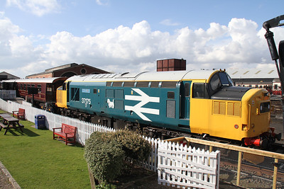37175 with W S Sellar nameplates.  Liking the light blue background.