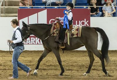 Scottsdale Arabian Horse ShowFebruary 13 2016 009