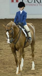 Scottsdale Arabian Horse ShowFebruary 13 2016 021
