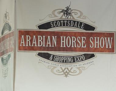 Scottsdale Arabian Horse ShowFebruary 13 2016 001