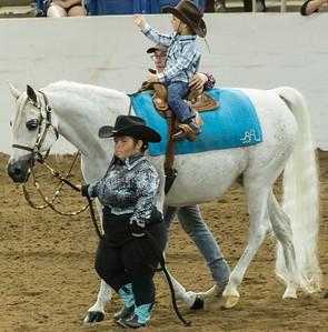 Scottsdale Arabian Horse ShowFebruary 13 2016 006