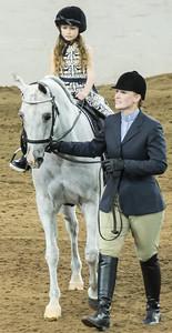 Scottsdale Arabian Horse ShowFebruary 13 2016 003