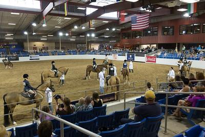Scottsdale Arabian Horse ShowFebruary 13 2016 022