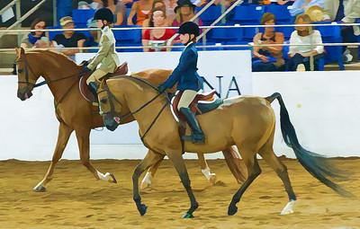 Scottsdale Arabian Horse ShowFebruary 13 2016 019