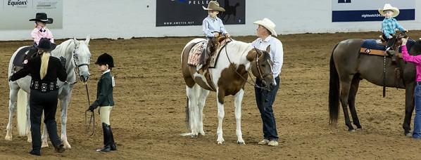 Scottsdale Arabian Horse ShowFebruary 13 2016 007